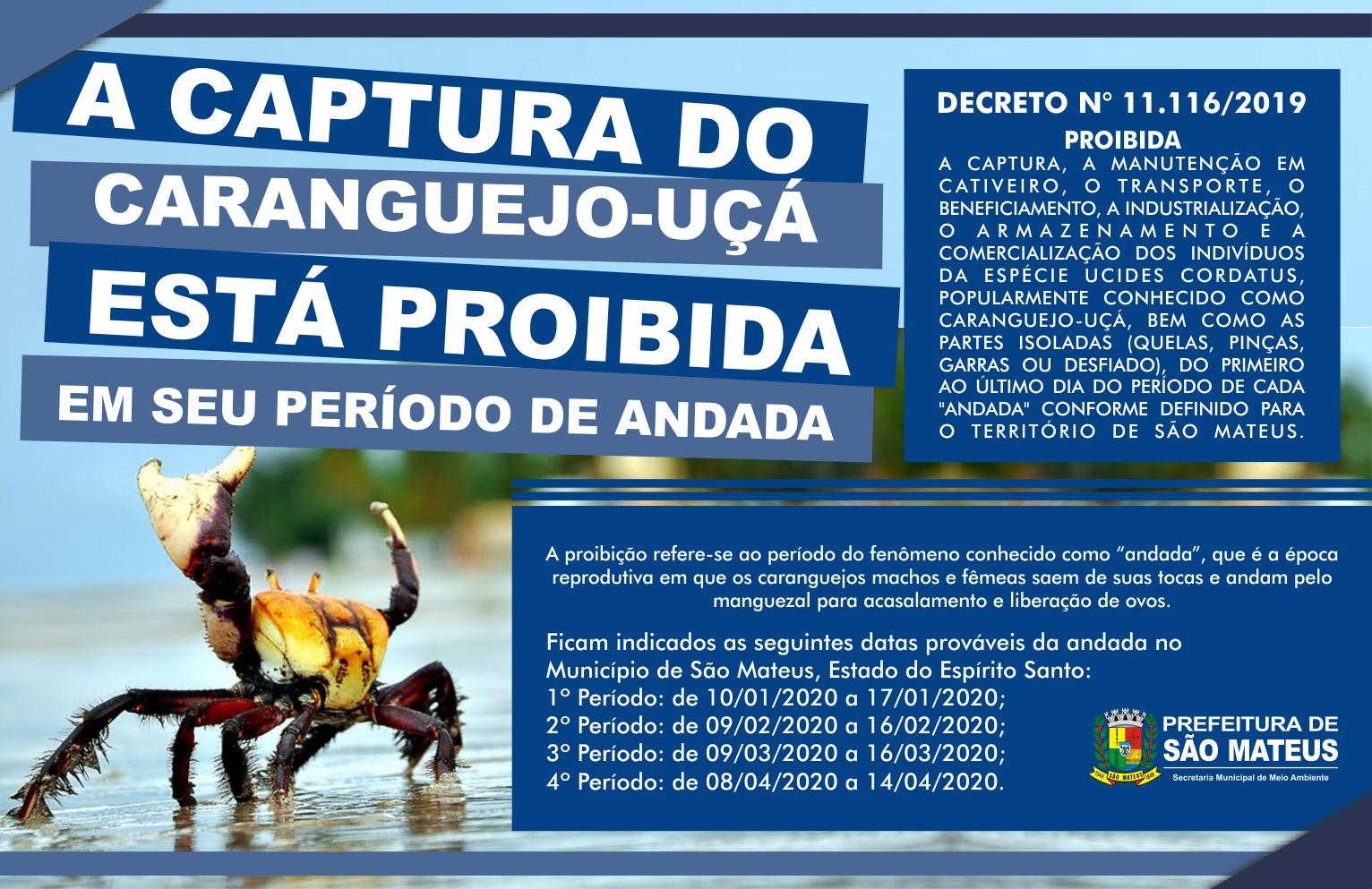 PREFEITURA DE SÃO MATEUS ANUNCIA PERÍODO DE DEFESO DO CARANGUEJO-UÇÁ