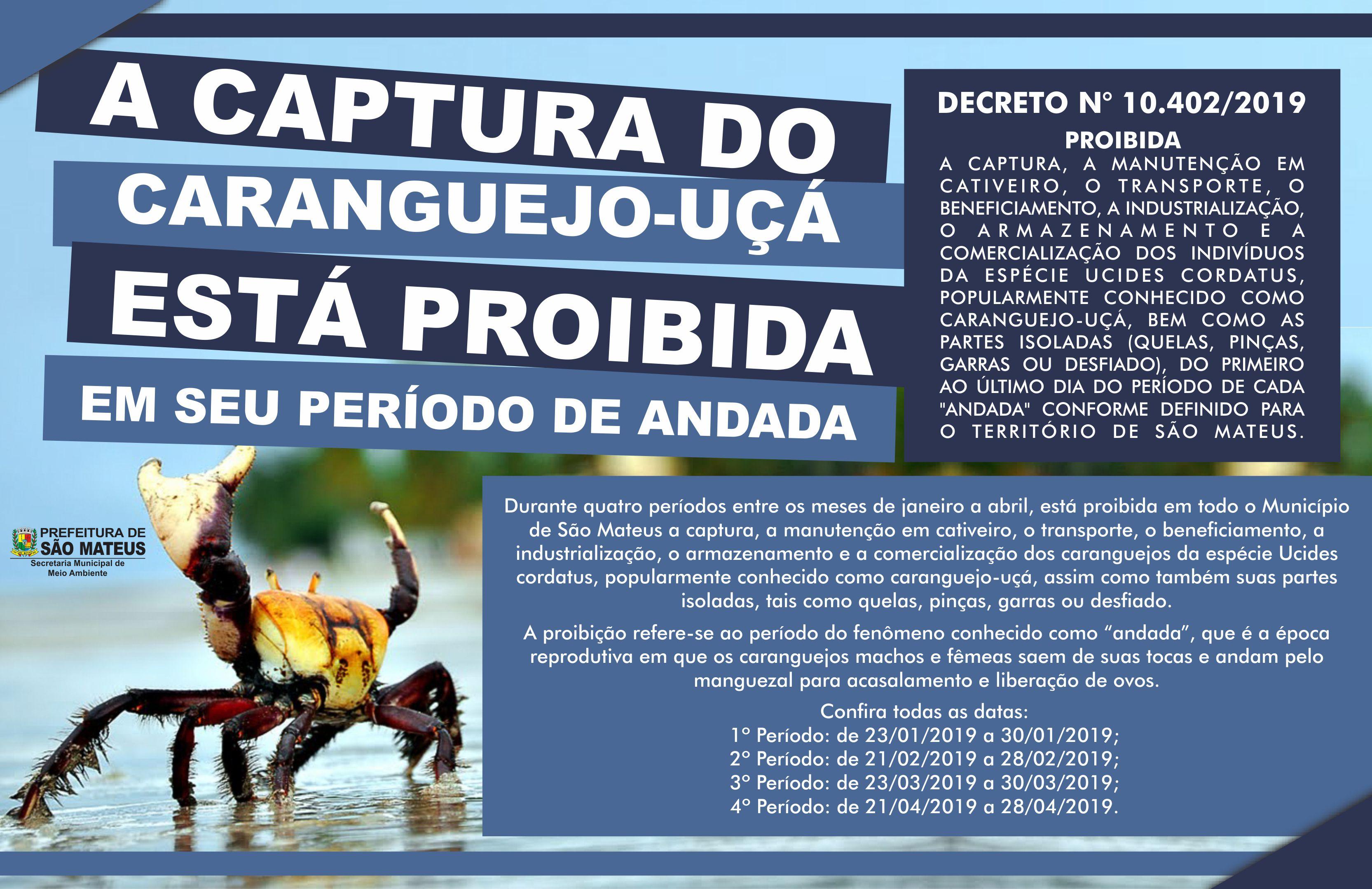 Segundo Período de andada Do Caranguejo-Uçá ocorre em fevereiro